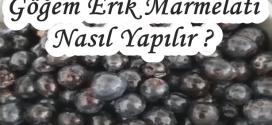 Göğem Erik Marmelatı Nasıl Yapılır ?