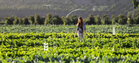 Yapay Zeka, Robot Teknolojisi ve Tarımda 5 Kullanım Alanı