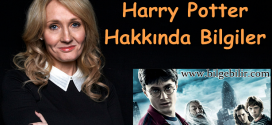 Harry Potter Hakkında Bilgiler