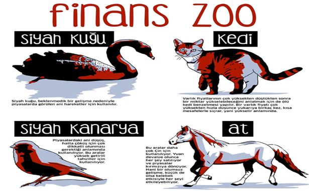 Finans zoo nedir